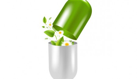 Pill With Herbs And Camomile, With Gradient Mesh, Vector Illustration
